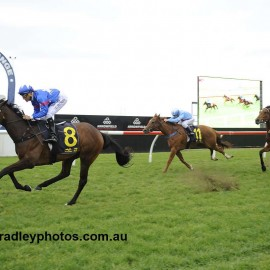 SEDANZER OUT CLASSES HER RIVALS