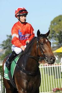 Sedanzer wins in Newcastle Race 7 290317 (4)