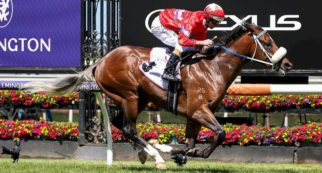 Lightsaber wins the Group 2 Sires\' Produce