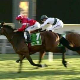SO UNITED WINS AT GOSFORD, 2ND WIN FOR BLUBLOODS IN SO MANY DAYS